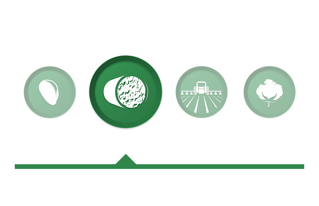 Deltapine® Yield Intro icon